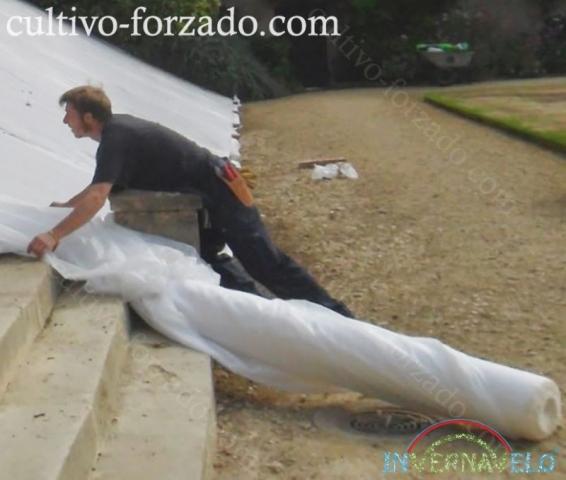 Instalación de manta térmica para protección de cultvios