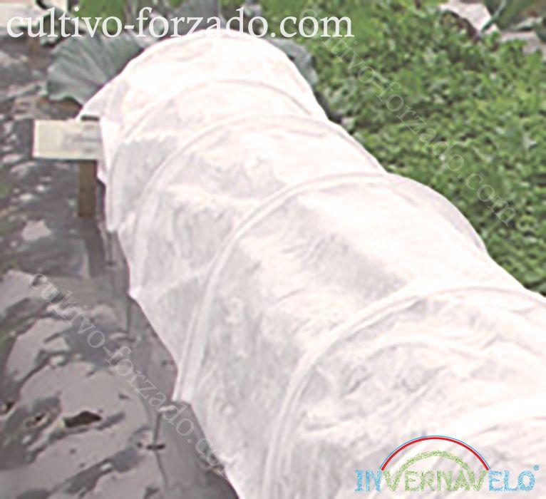 Protección y control del cultivo utilizando  microtunel invernavelo