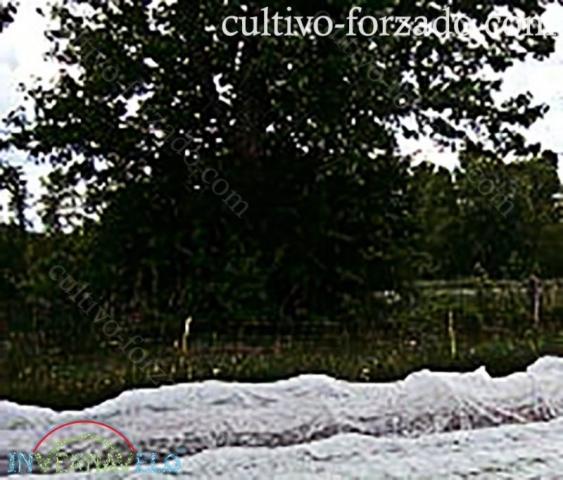 microtunel invernavelo para proteger los cultivos de riesgos y clima externos
